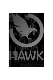 logo hawk
